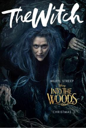 Into the Woods Witch